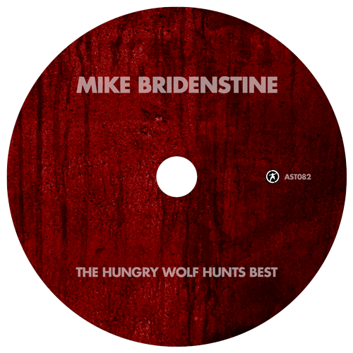 Mike Bridenstine - Disc